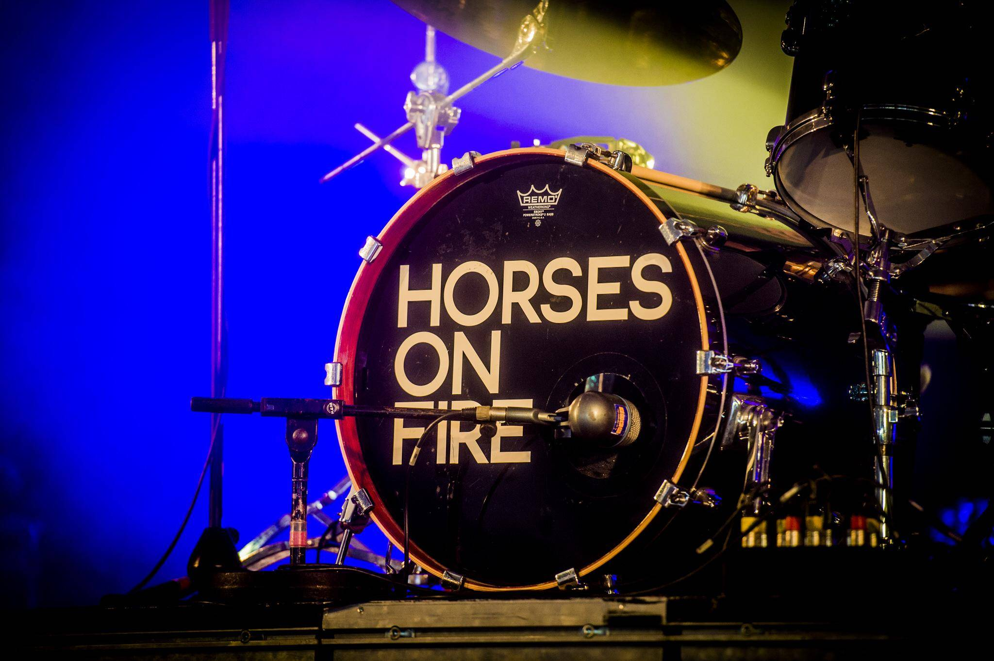 Horses On Fire
